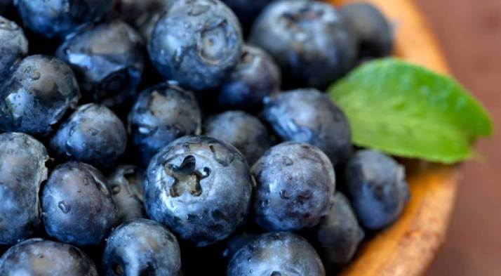blueberries-antioxidants-acne